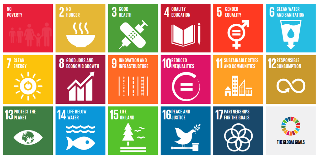 Focusing on Key Sustainable Development Goals Would Boost Progress Across All